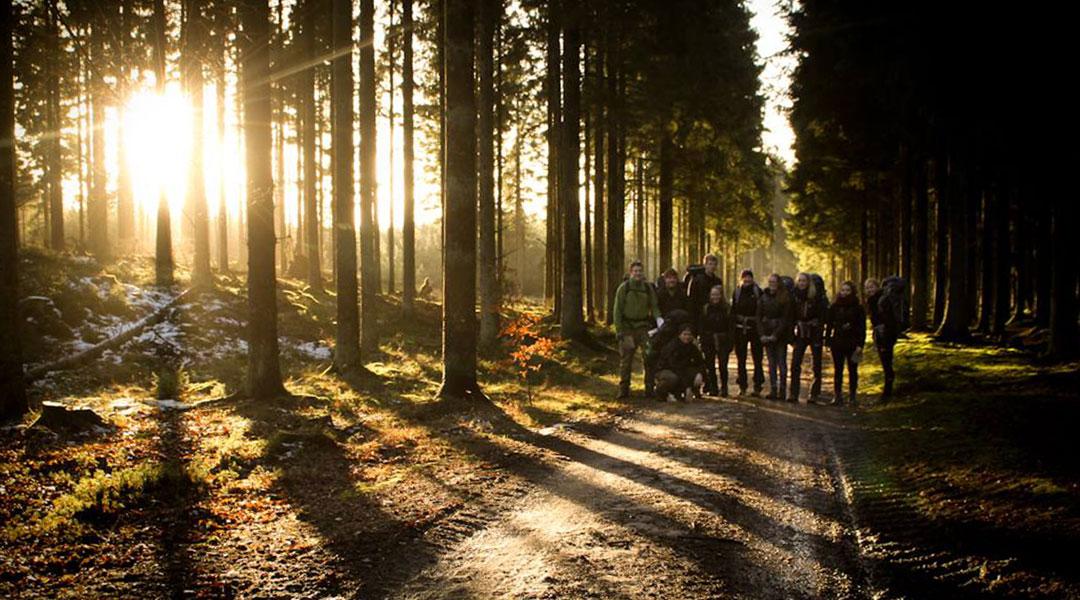 Søhøjlandet gruppe i smukt sollys på skovvej