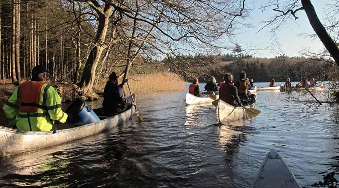Søhøjlandet kanoer under trækroner