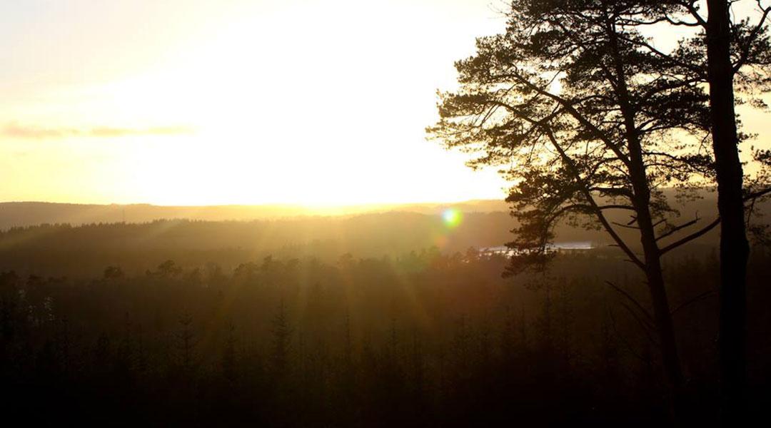 Søhøjlandet solopgang